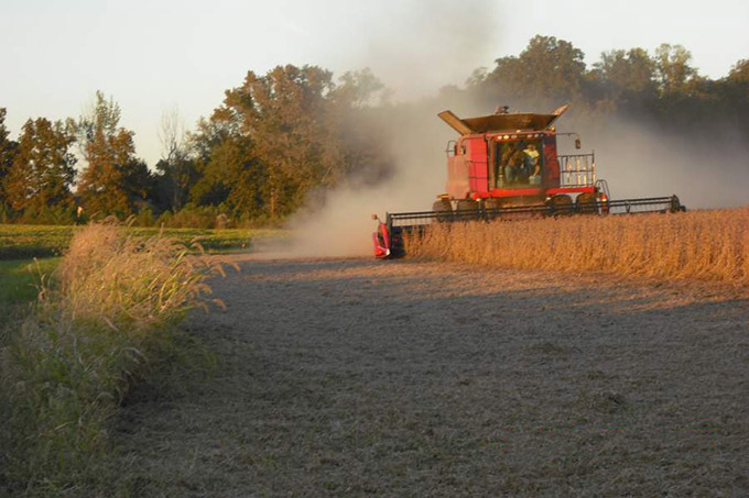 Combine and Soybeans