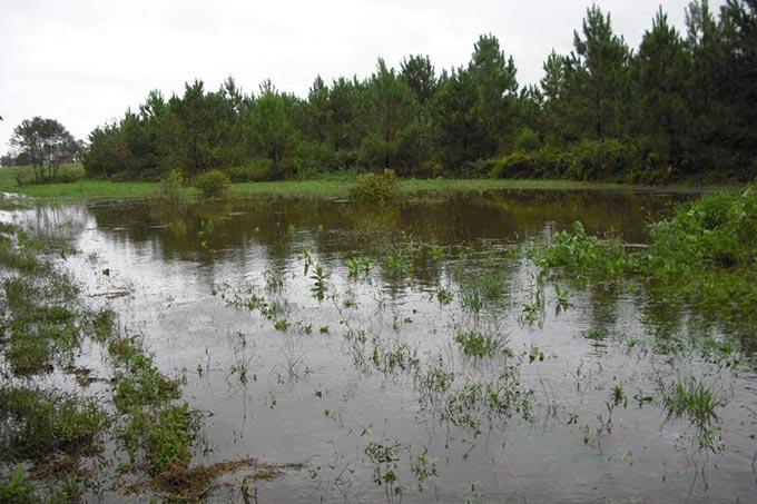 ground water replenishment